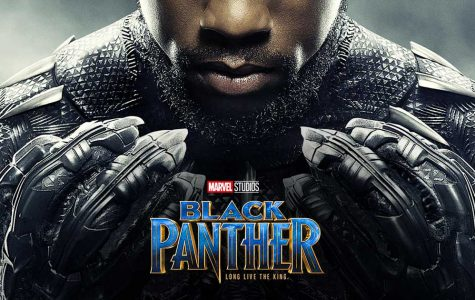 Time to Revisit Black Panther